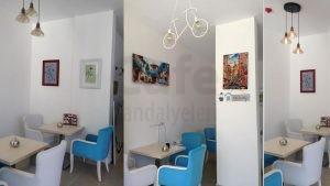 Mavi Cafe Sandalyesi