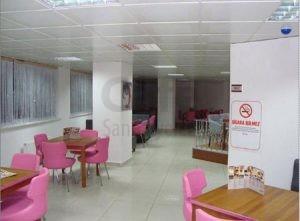 Kutahya Teras Cafe Poliuretan Pembe Sandalye